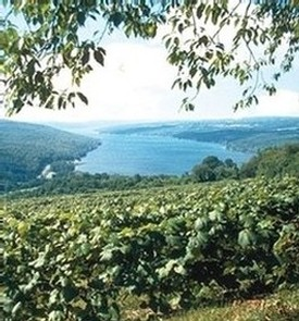 Keuka Lake from Esperanza Drive